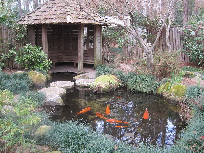 Massee_Lane_Gardens_fish_pond
