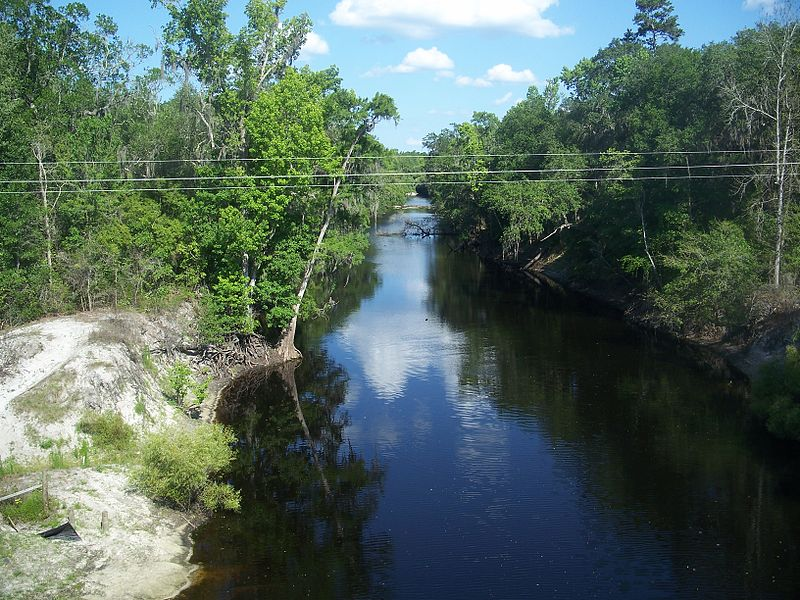 800px-Alachua-Union_FL_Santa_Fe_River_east01