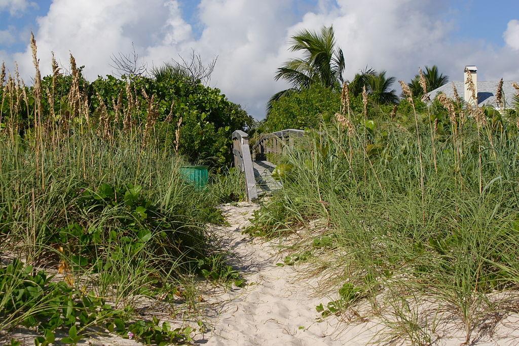 1024px-Beach_access