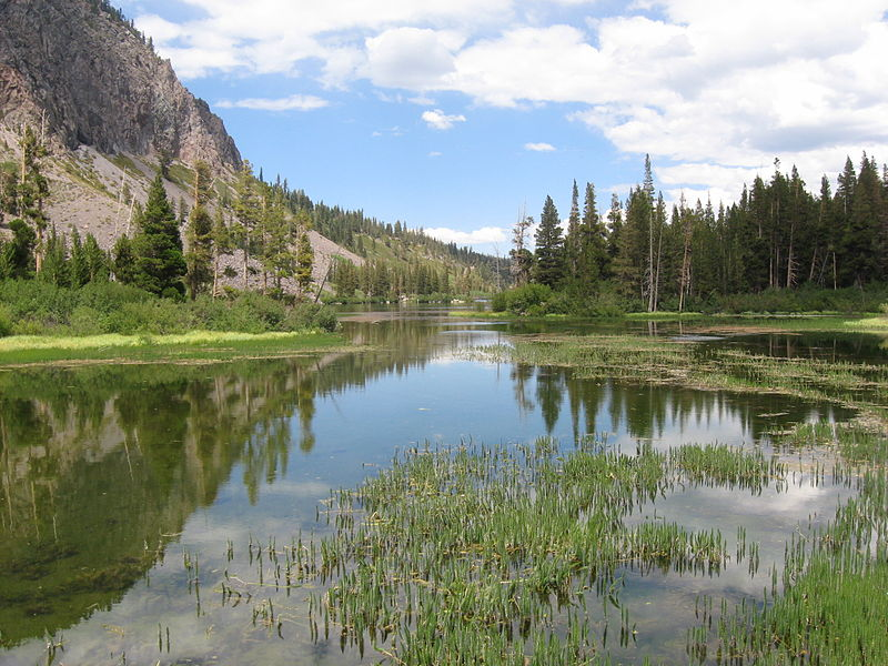 Mammoth_Lakes_(August_2008)_01